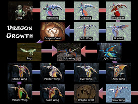 Dragon Growth Diagram.