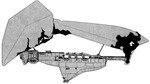 Craymen's Flagship (Side View)
