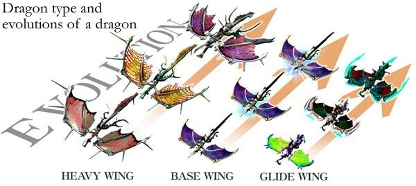Panzer Dragoon Orta Dragon Type and Evolutions