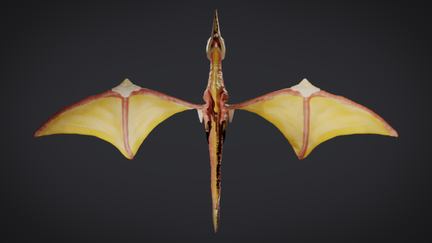 Basic Wing 3D Sculpt Bottom View
